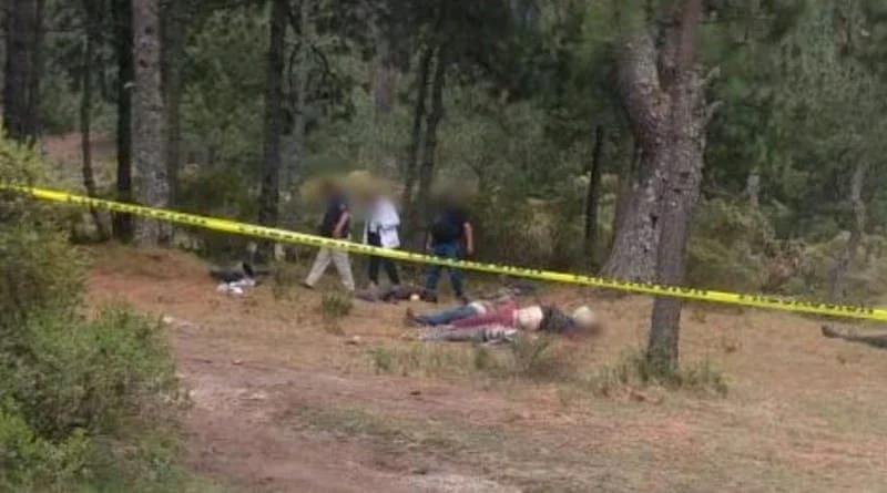 Efecto narcovirus: Hallazgo en los Azufres de seis cuerpos con impacto de bala