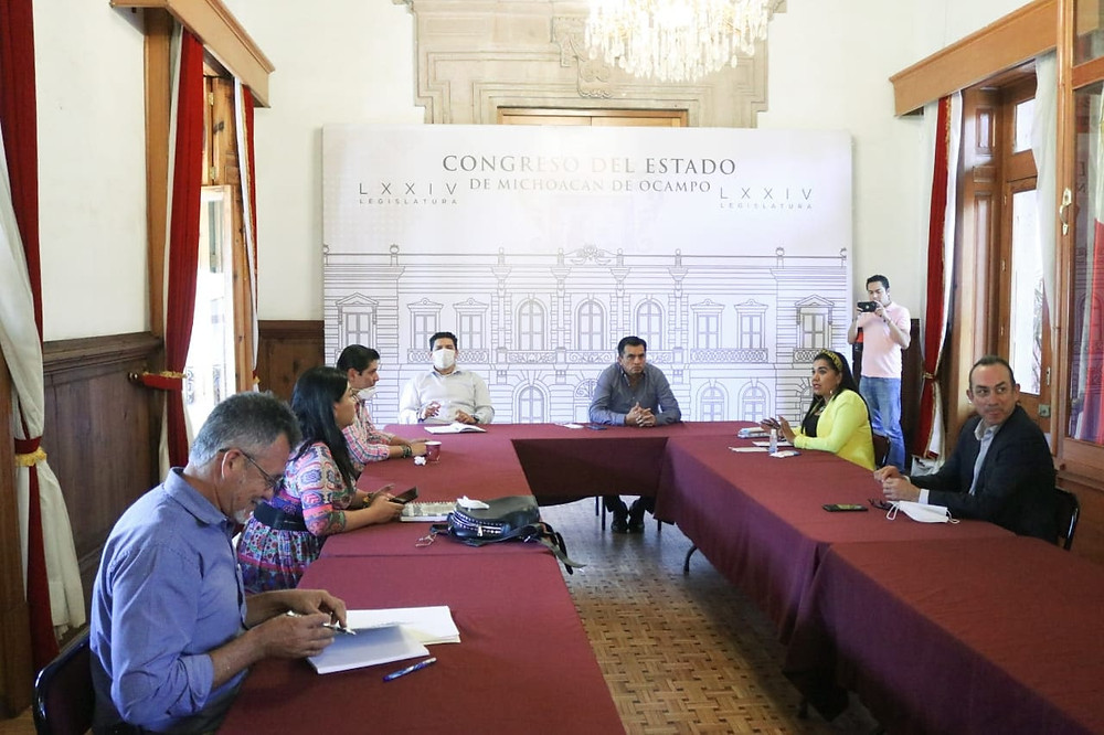 Diputados de Michoacán reiteraran disposición para luchar contra el Covid-19