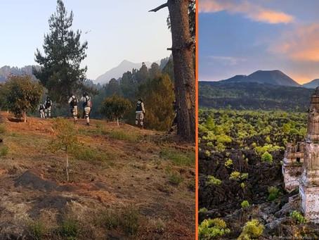 Geólogo queda herido al caer a una barranca en el Volcán Paricutín