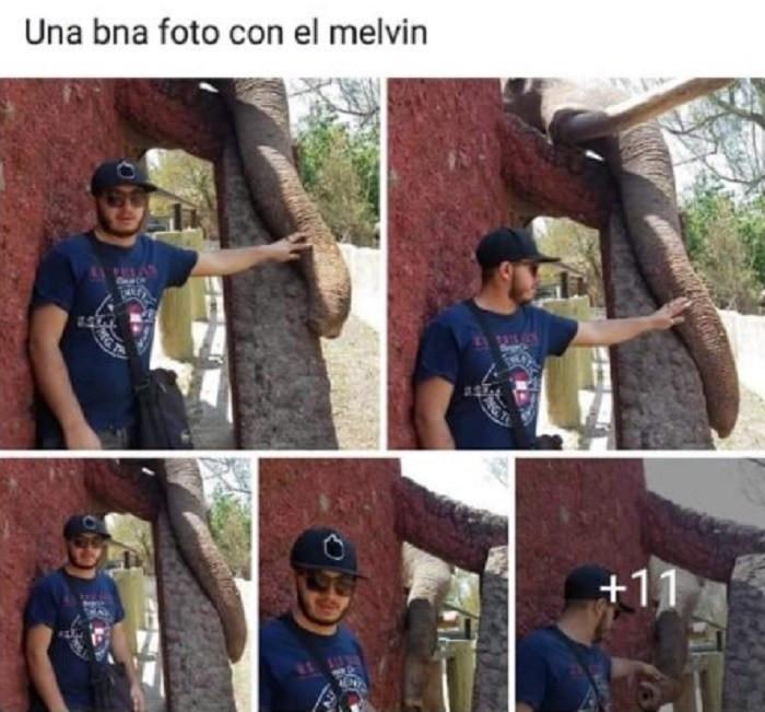 Jóven se toma foto con elefante del Zoológico de Morelia