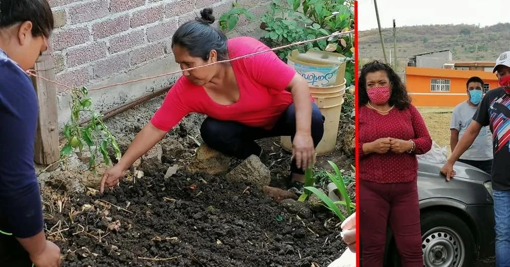 María Chávez impulsa huertos de traspatio para enfrentar las carencias económicas por covid-19
