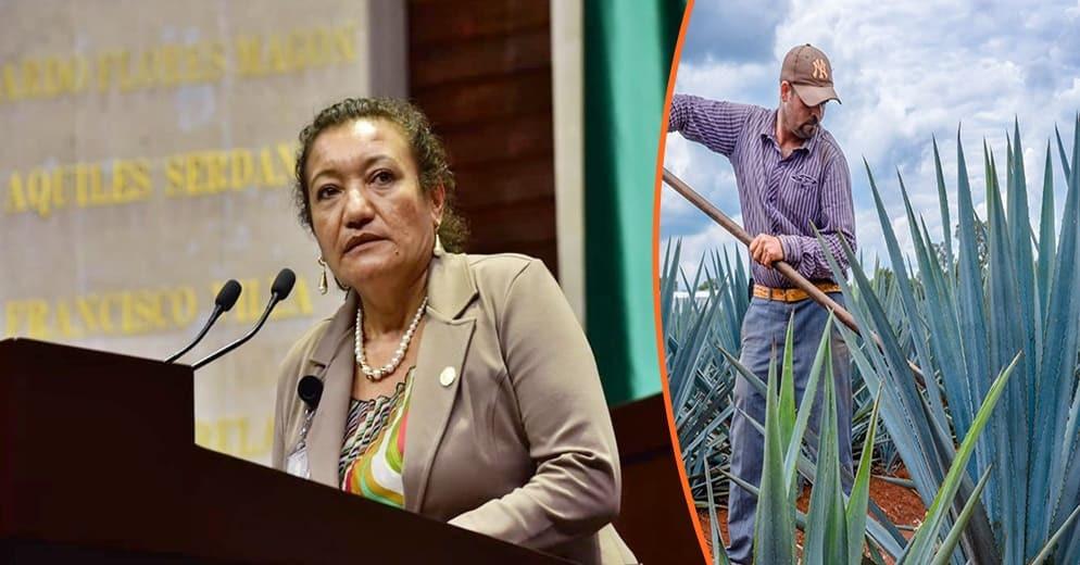 Para reactivar la economía local, María Chávez impulsa cooperativas productivas