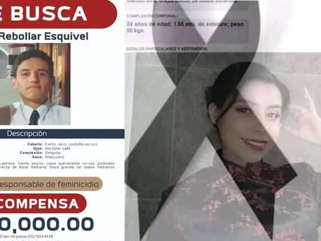 FGE ofrece recompensa de 100 mil pesos por ubicación del presunto feminicidio de Danna