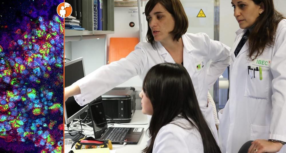 Por cada mexicano con Covid-19 habría más de 50 a 100 infectados: UNAM