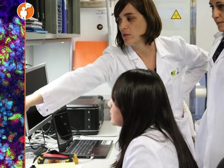 Por cada mexicano con Covid-19 habría más de 50 a 100 infectados: Matemáticas aplicadas de la UNAM