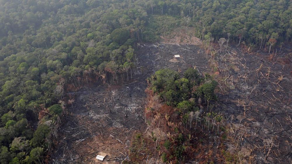 Incendio del Amazonas equivale a 3 veces la CDMX