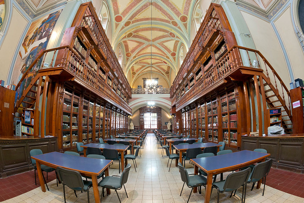 A partir de hoy la UMSNH pone a disposición su acervo bibliográfico en línea