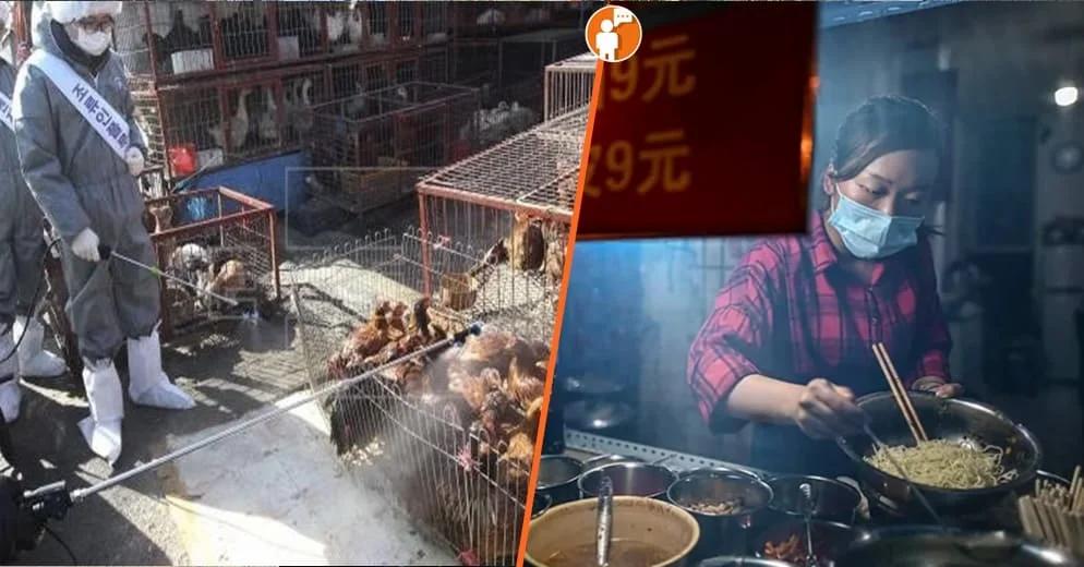 ¡Aleluya! Wuhan prohíbe oficialmente comer y criar animales salvajes