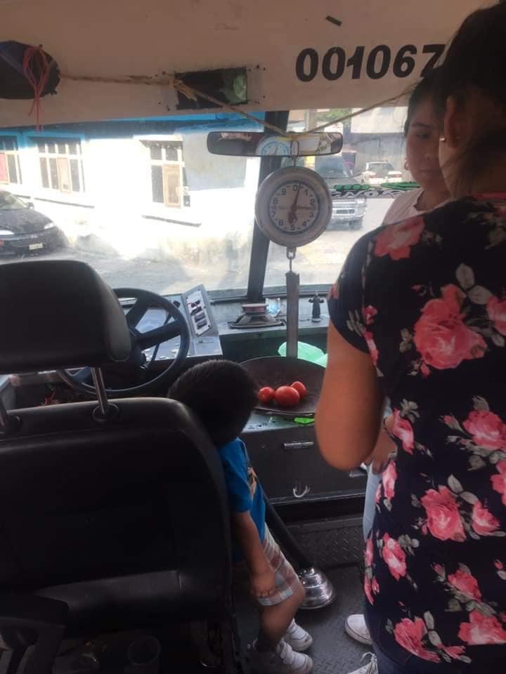 ¡Orgullo Nacional! Surge el microbús que reparte verduras a domicilio en Xochimilco
