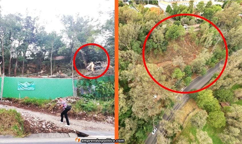 Captan desde el aire la tala de varios árboles por las escaleras de Santa María en #Morelia