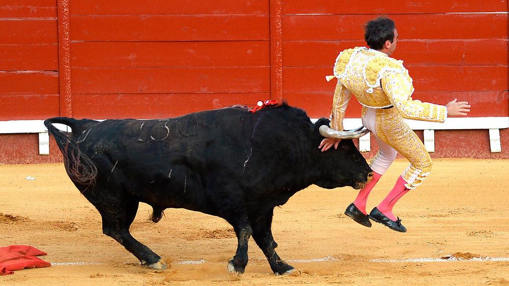 El torero español sufre una nueva cornada en los muslos cuando se disponía a matar al toro