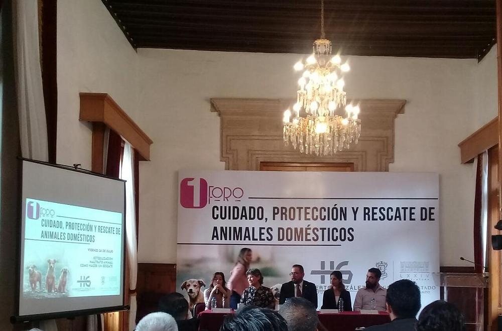 Con el 1er Foro estatal de Michoacán en cuidado de animales, se garantiza la protección y su rescate