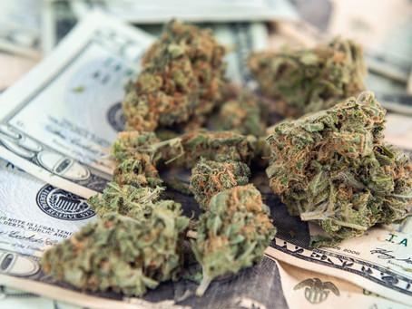Vitreo lança fundo de cannabis legal com investimento mínimo de R$ 5 mil