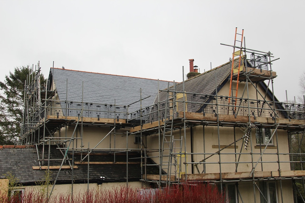 New roof - rear