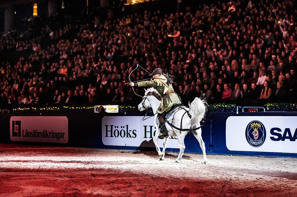 Sweden International Horse Show 2018.jpg