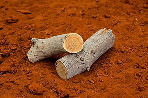 Sandalwood Log on red dirt