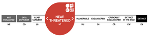 Red Sandalwood extinction list IUCN