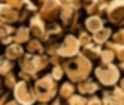 Raw Sandalwood trees stacked