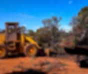 Bulldozer loading Sandalwood tree into truck