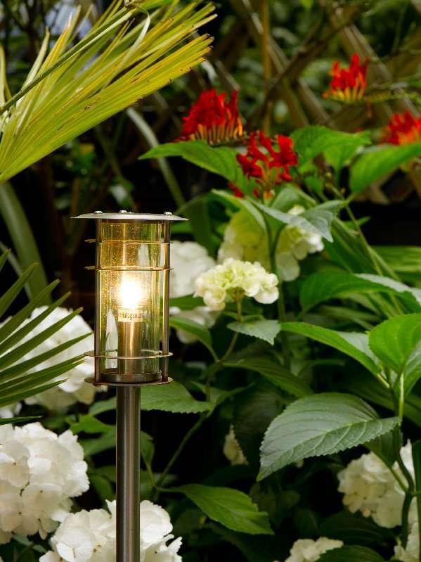 lola garden 2.jpg