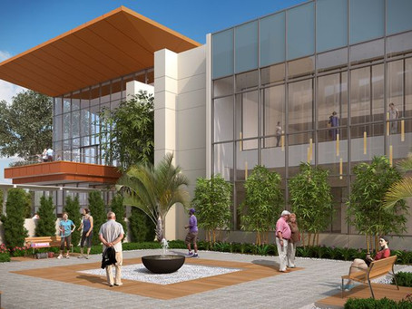 Zion Farms & Market wins contract for 800 sq.ft. garden installation in Winter Park!