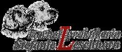 Steffi Logo.png