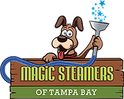 magicsteamerstb_logo.png