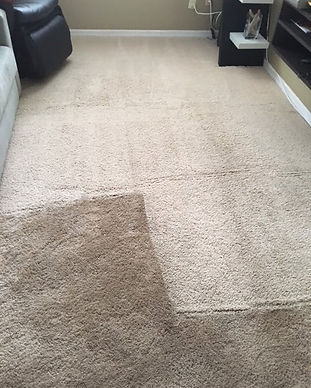 Carpet b4 and after.jpg