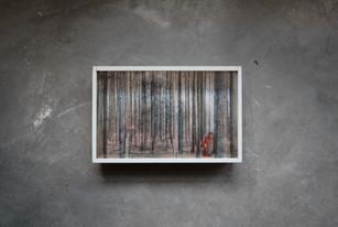 houten kistje met glas 20,5x31cm.