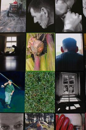 Drie grote panelen met afbeeldingen van cliënten, hun werk, de omgeving van een zorgboerderij. In opdracht gemaakt. 2005