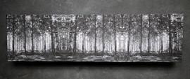 zwartwitbos op houten paneel 21x77,5cm.