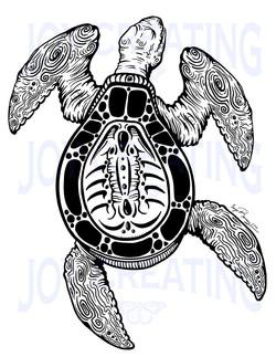 Tattooed Turtle