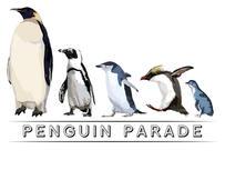 Penguin Parade.jpg