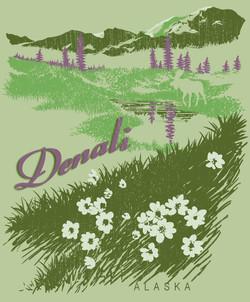 Denali Meadow