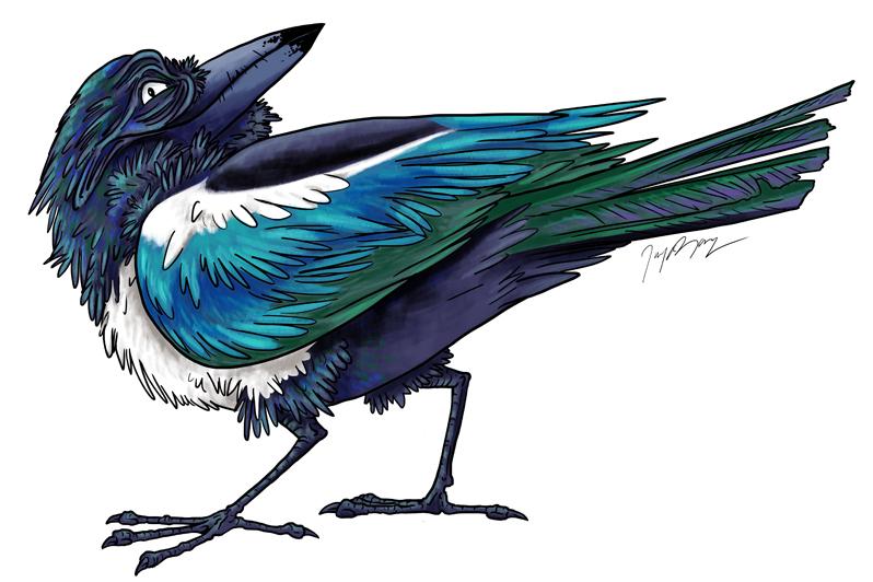 Mischievous Magpie