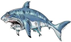 Grumpy Great White Shark