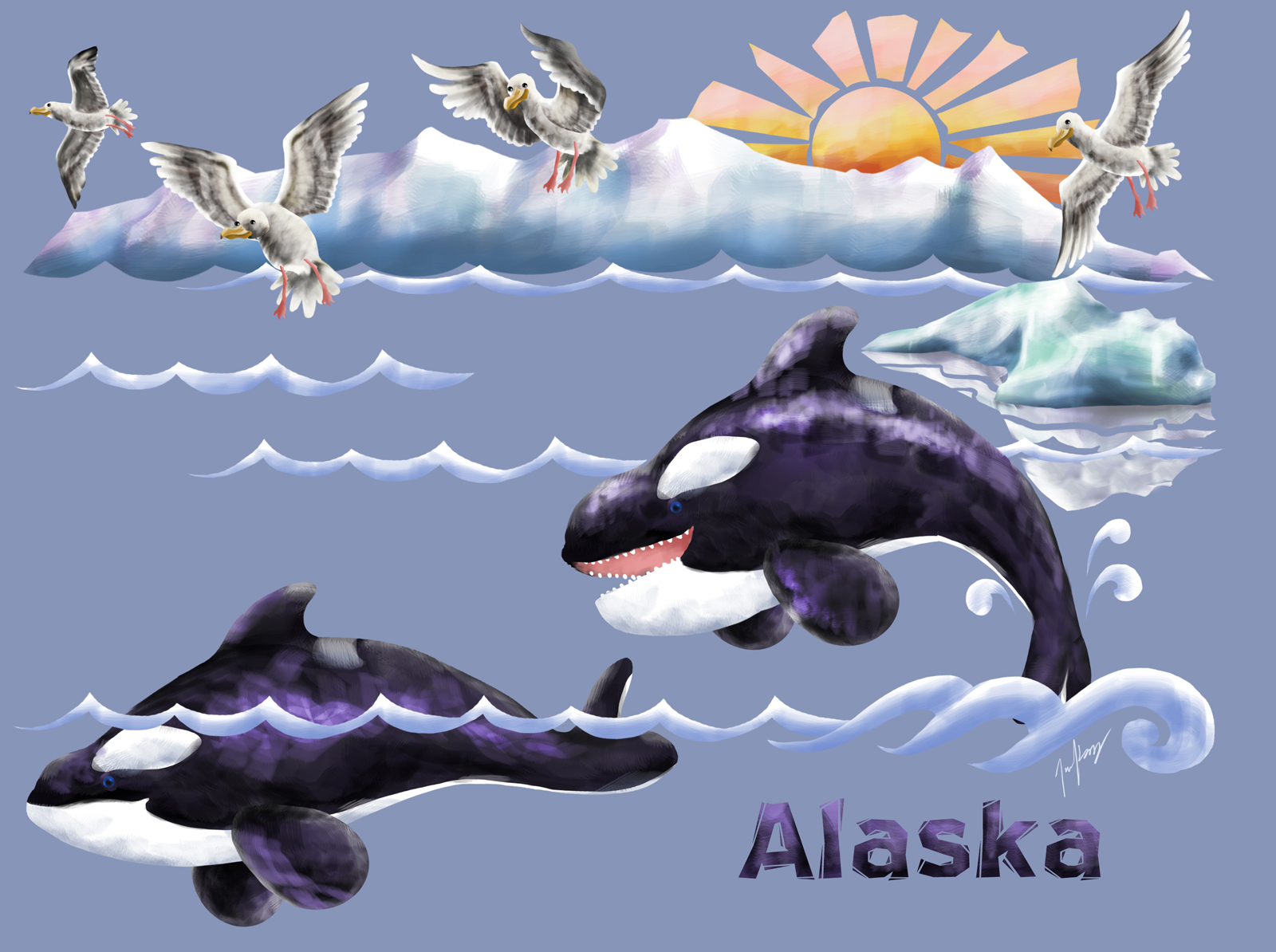 Leaping Orcas