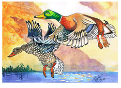 Goofy Duck Stamp CPRght