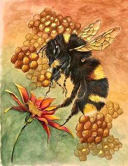 Big Bee Cropped