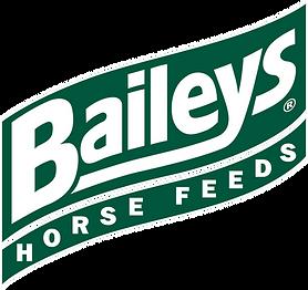 Baileys HF logo 343.png