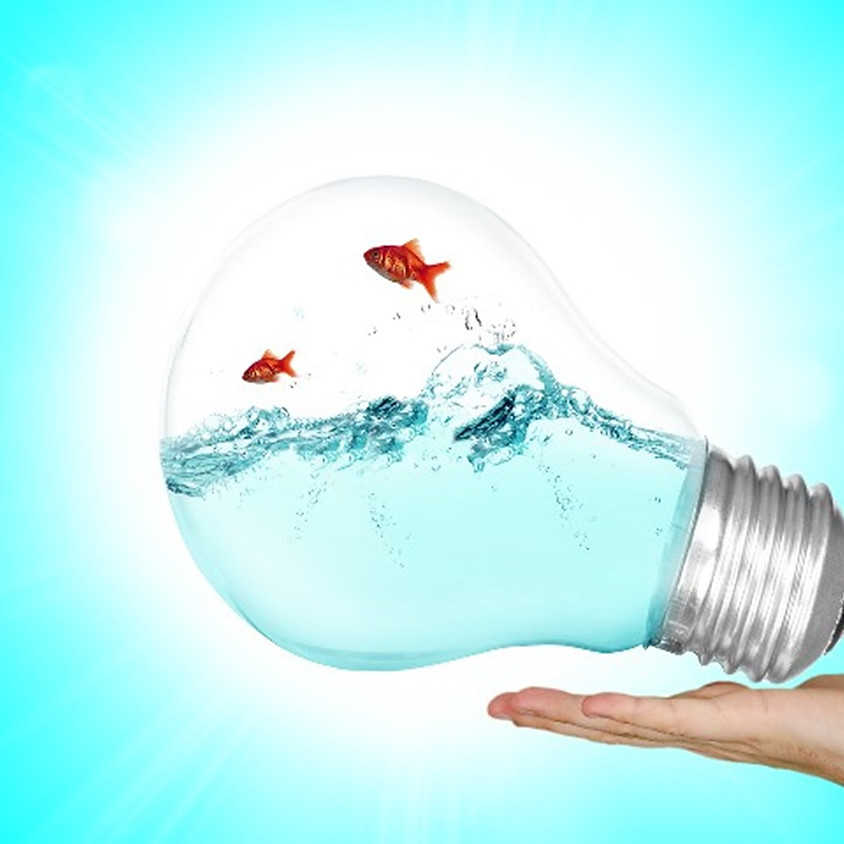 Système de Management Environnemental : Référentiel ISO 14001 version 2015
