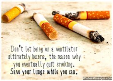 lungsright.jpg