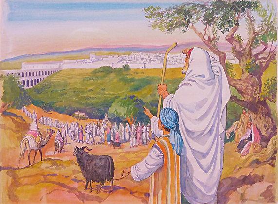 קנבס צופים על המקדש