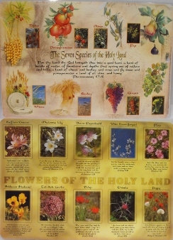The Seven Species of the Holyland and Flowers Placemat