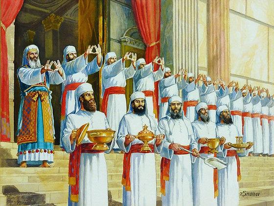 ברכת כהנים במקדש