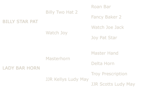 RedBarHornpedigree copy.PNG