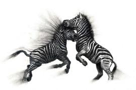 """Stripes Off!"""