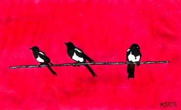 """Magpies (Colour)"""