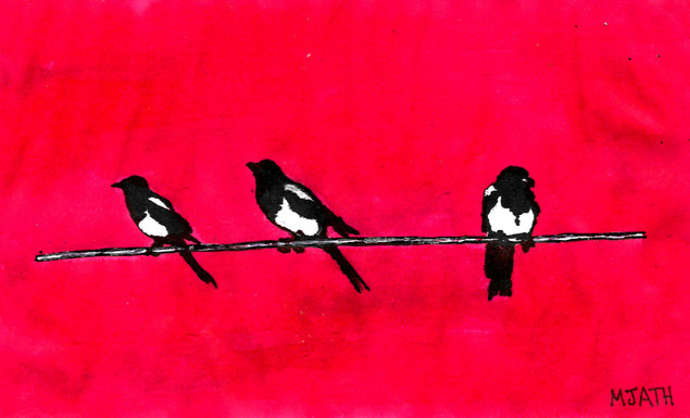 """Magpies (Colour)"""