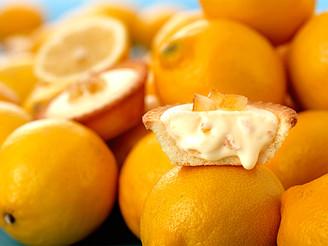 五月即將上市新口味「黃檸檬起士塔」「黃檸檬瑪德蓮」5/1將於門市及網路同步開賣!!